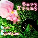 gars-trans